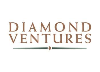 diamond ventures